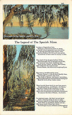 Postcard - The Legend of The Spanish Moss - Vintage Unused A04