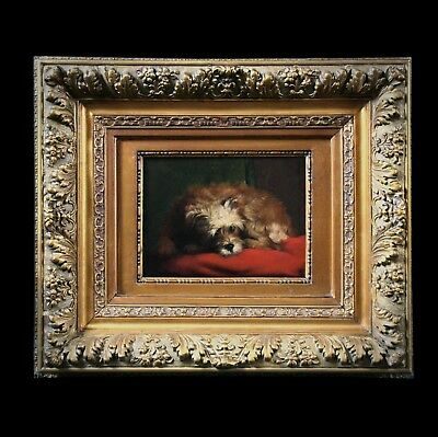 Fine original antique oil painting on panel portrait of a little dog frame 19th