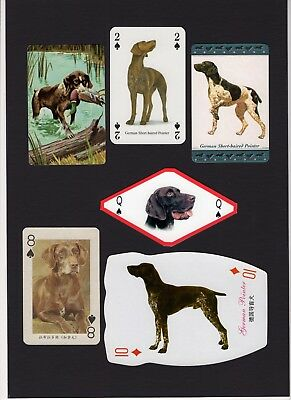 German Shorthaired Pointer Mounted Collection Of Vintage Dog Playing Cards