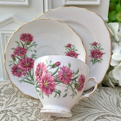ROYAL VALE 1960s TRIO SET CUP SAUCER PLATE - PINK CORNFLOWER - GILDED BONE CHINA