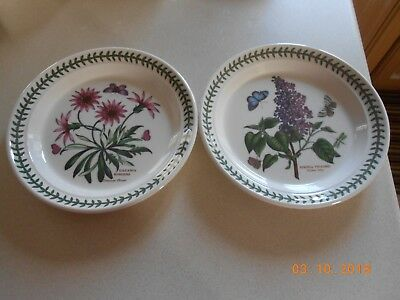 Portmeirion  Botanic Garden Pair Of  Medium Plates - 8.25 Inch