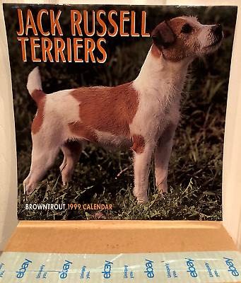 1999 Jack Russell Terriers Calendar - Photography Ready for Individual Framing!!