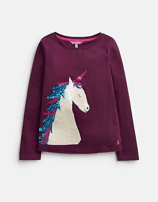 Joules Long Sleeved Applique Top in PLUM