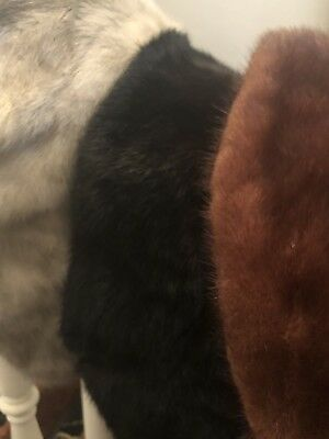 Lot of 3 Vintage Fur Collars