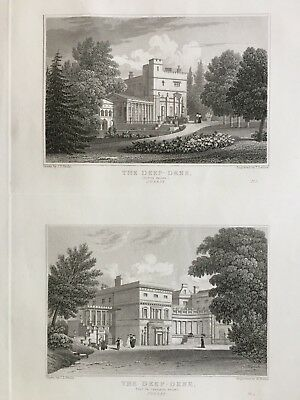 1830 Antique Print; Views of Deepdene, Dorking, Surrey after Neale