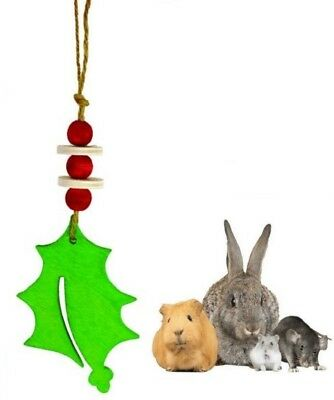 Christmas Xmas Festive Holly & Berry Hanging Garland Small Animal Gnaw Chew Toy