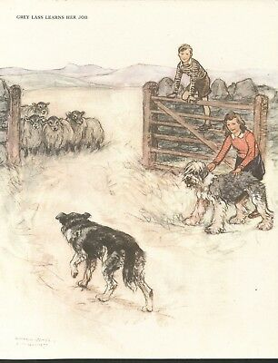 Boy Girl Border Collie Old English Sheepdog Herd Sheep Lovely 1940'S Dog Print