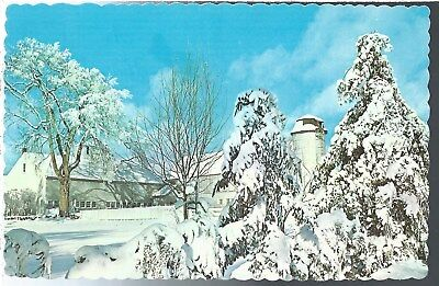 Winter Magic Vintage Postcard Chrome Dexter Press