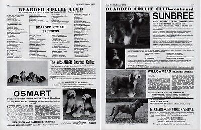 Bearded Collie Club Dog Kennel Advert Pages Dog World 1972 Various Kennels