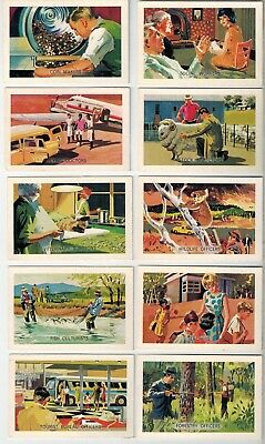 Shell Oils Project Cards - Citizenship Series - 40 Collector Cards - Lot A