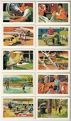Shell Oils Project Cards - Citizenship Series - 40 Collector Cards - Lot B