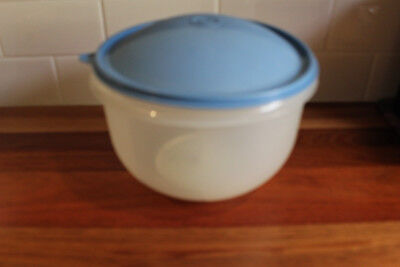 LargeTupperware Lettuce Storage container. Clear base,blue lid & white Spike.