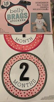 Belly Brags Stickers for Baby Girl Milestones up to 12 months Adorable NIP