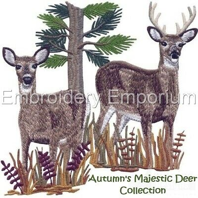 Autumn's Majestic Deer - Machine Embroidery Designs On Cd