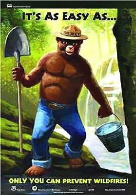 Original SMOKEY the BEAR Poster HTF Forest Service Fire Prevention FREE SHIP!