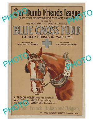 Old Historic Photo Of Wwi British Military Poster, Wound Horse Blue Cross Fund 2