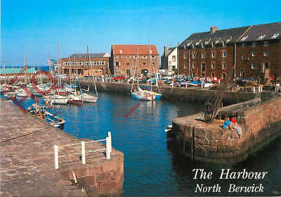 Picture Postcard, North Berwick, The Harbour [Whiteholme]