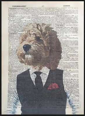 Cockapoo Print Vintage Dictionary Page Wall Art Picture Dog In Clothes Cockerpoo