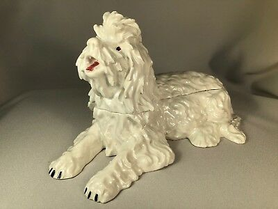 Large Trinket Box Made In Italy For Bonwit Teller, Italian Spinone Dog, Unusual