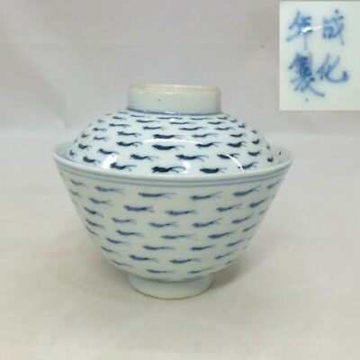 H301 Classy Japanese really old KO-IMARI blue-and-white porcelain covered bowl 4