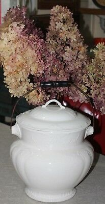 Antique Cornell Ornate White Ironstone Porcelain Chamber Pot with Lid & Handle