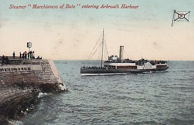 """OFFICIAL POSTCARD PADDLE STEAMER """"Marchioness Of Bute"""" Arbroath Harbour DUNDEE"""