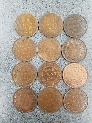 12 - 1905 Canadian Large Cents - high grade
