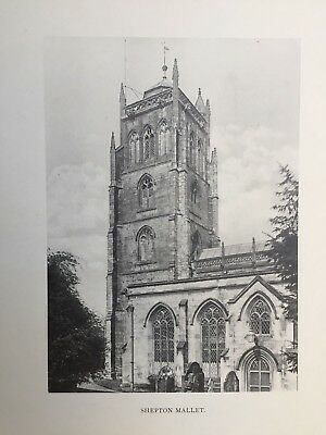 1904 Antique Print; Shepton Mallet Church, Somerset - Brereton