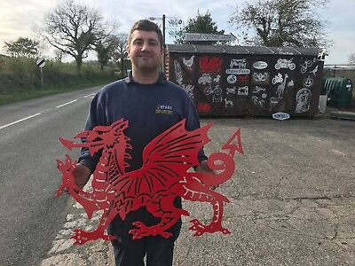 Large Welsh Dragon Zinc Oxide & Powder Coated Red 78cm x 50cm