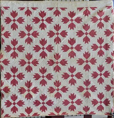 Antique Bear Paw Quilt, Double Pink and White, Hand Quilted #18434