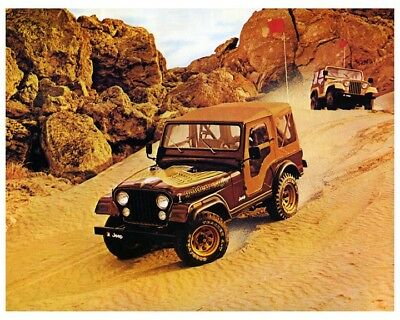 1979 Jeep CJ5 Golden Eagle Automobile Photo Poster zca4166
