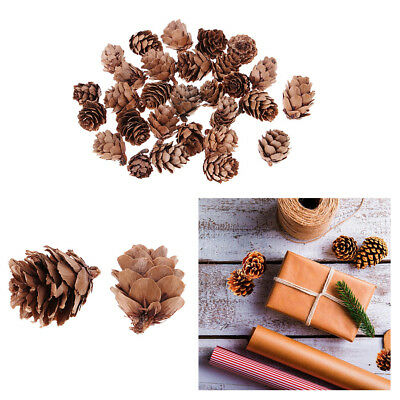 120x Vintage Natural Dried Pine Cones Dried Flowers for Christmas Decoration