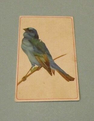"""Ariosa Coffee Bluebird 5"""" Victorian Trade Card Great Building Drawings on Back"""