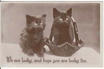 Vintage B&W Postcard, two lucky cats c1930s, (q), used Postage Combined