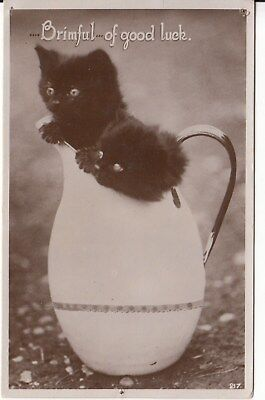 Vintage B&W Postcard, Cats, 2 Kittens in a J c1930s, (q), used Postage Combined
