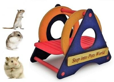 Hamster Dwarf Hamster Gerbil Mouse Exercise Colourful Play Wooden Swing Toy