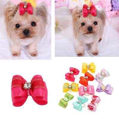 10Pcs/set Pet Dog Cat Flower Hair Bows With Rubber Band Pets Grooming Supply