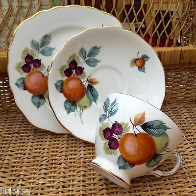 ROYAL VALE 1960s TRIO CUP SAUCER PLATE SET - ORCHARD FRUIT - GILDED BONE CHINA