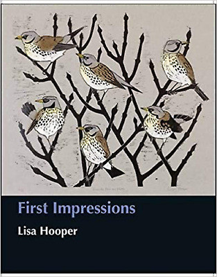 First Impressions by Lisa Hooper (illustrator) NEW Hardback Book