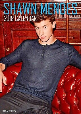 2019 Shawn Mendes A3 Calendar Wall Calender New Factory Sealed Perfect Gift