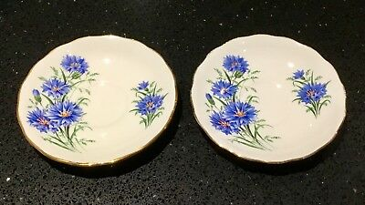 ROYAL VALE 1960s SAUCER SET x2 - BRIGHT BLUE CORNFLOWERS - GILDED BONE CHINA
