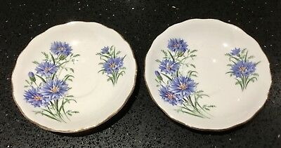 ROYAL VALE 1960s SAUCER SET x2 - BLUE CORNFLOWER - GILDED BONE CHINA