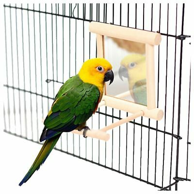 Wooden Pet Toy Mirror Fun Toy for Cockatiel Small Birds Parrot Climb Accessories