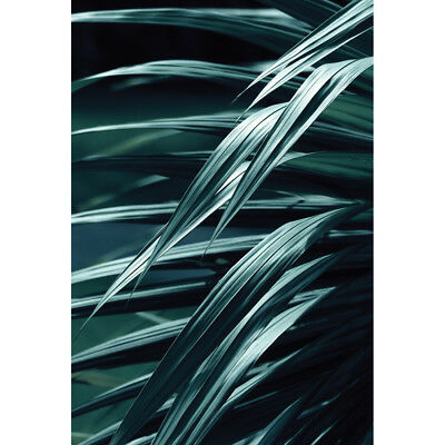 The Canvas Art Factory Australia Frond Art, Blue (Portrait) Canvas prints