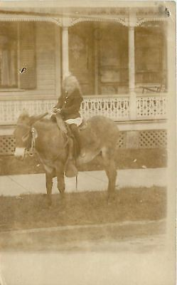 Sandusky Ohio~Do You Know Who Is On This Donkey?~Real Photo Postcard 1910