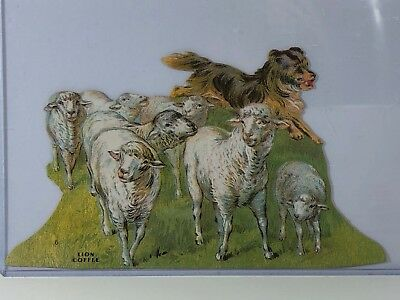Vintage Diecut Ad Of Border Collie Herding Sheep For Lion Coffee, No. 6