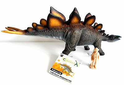 STEGOSAURUS DELUX 1:40 DINOSAUR DETAILED MODEL by CollectA  Educational BNWT