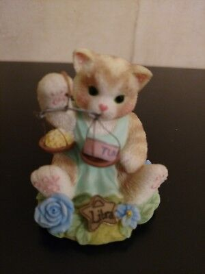 Calico Kittens Libra Zodiac Sign Charming Easy Going Romantic 542458 Cat Scales