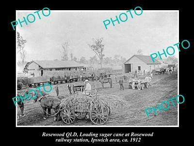 Old Large Historic Photo Of Rosewood Qld, Loading Sugar At Railway Station 1912