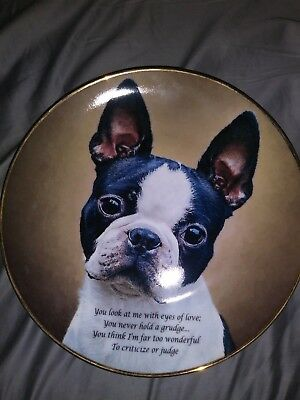 Boston Terrier Collector Plate- Eyes of Love